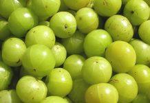 amla fruit benefits