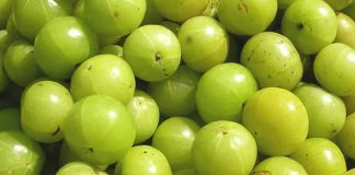 amla fruit benefits