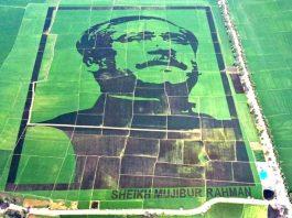 Crop field mosaic honouring Bangabandhu
